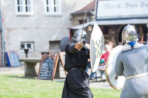 Burgfest 2014_7